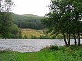 Loch Avich - geograph.org.uk - 40453.jpg