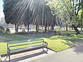 Long shot of the bench (OpenBenches 5899-1).jpg