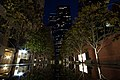 Los Angeles (California, USA), South Olive Street -- 2012 -- 2.jpg