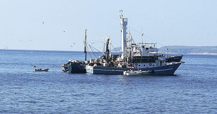 Losinj Island, Fishing boats of Primorje-Gorski Kotar County in Croatia.jpg