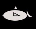 Ltgraygrayfish2.png