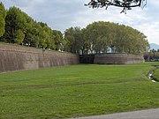 Lucca.city walls01
