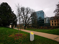 Luxembourg, Arbre du prince Charles de Luxembourg (102).jpg