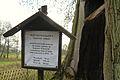 MOs810, WG 2014 66 Puszcza Notecka west (Quercus robur, Lipki Male, monument (3).JPG