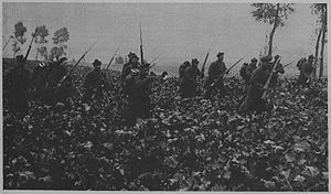 Fusiliers Marins -  The first engagement of the fusiliers marins in the north, in November 1914