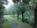 Maarschalkerweerd en Mereveld, Utrecht, Netherlands - panoramio - Alexandros Georgiou (7).jpg