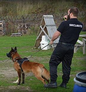 Maître-chien en France — Wikipédia
