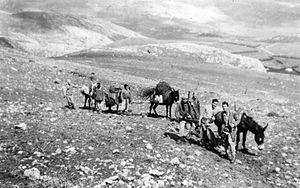 Manara, Israel - Yiftach Brigade bringing supplies to Kibbutz Manara. 1948