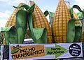Manifestação pro milho transgênico (Antonio Cruz) 20mar07.jpg
