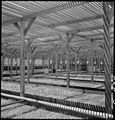 Manzanar Relocation Center, Manzanar, California. A view of section of the lath house at this War R . . . - NARA - 538033.jpg
