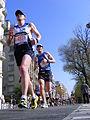 Marathon Paris 2010 Course 15.jpg