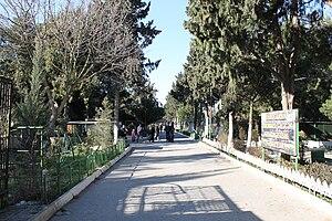 Mərdəkan - Image: Mardakan dendrariy