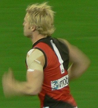 Mark Johnson (footballer) - Playing for Essendon during the 2007 AFL Season