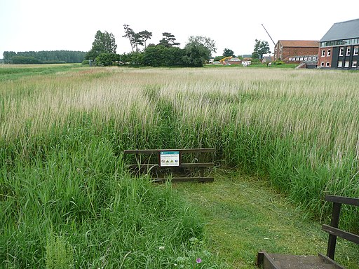 Marshland near the River Alde and Snape Maltings