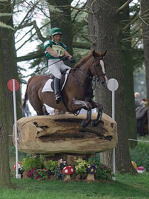 Mary King (equestrian) - Mary King on King's Gem at the 2007 Blenheim Horse Trials