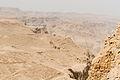 Masada (5100998497).jpg