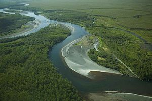 Meandering river aerial photography.jpg