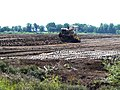 Mechanised peat digging - geograph.org.uk - 902560.jpg