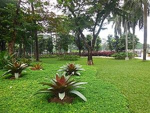 Mehan Garden - Mehan Garden in Manila