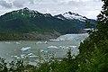 Mendenhall Glacier (5906856827).jpg