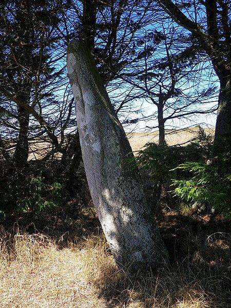 Menhir a Houat indiqué sur la Carte IGN Belle Ile - Menhir de Parc-er-Menhir