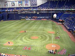 The field at the Metrodome, baseball configuration