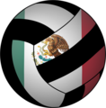 MexicoVolleyball.png