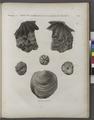Minéralogie. Bords de la Mer Rouge et Vallée de l'Égarement. Coquilles fossiles (NYPL b14212718-1268705).tiff