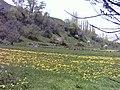 Minak in Yush road 37 - panoramio.jpg