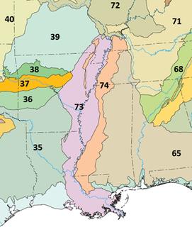 Mississippi Alluvial Plain (ecoregion)