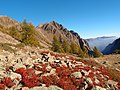 Monte Bravaria.jpg