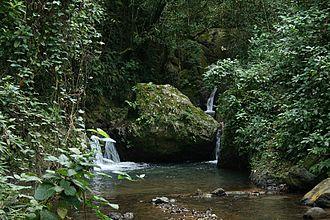 Maricao, Puerto Rico - Water stream at El Monte del Estado