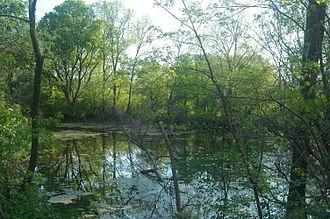 Záhorie Protected Landscape Area - Wetlands alongside the Morava River
