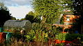 Moss Side Community Allotment.jpg