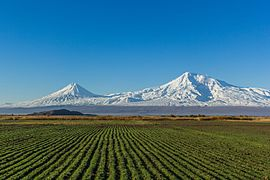 Mount Ararat from Artashat (28mm).jpg