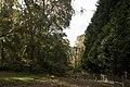 Mount Wilson NSW 2786, Australia - panoramio (68).jpg