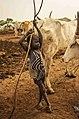Mundari Cattle Boy.jpg