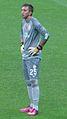 2013 Türkiye Süper Kupası.  Fernando Muslera, 2013-14 sezonu başında oynanan.