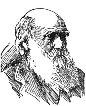 NSRW Charles Robert Darwin