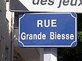 Nantes Grande Biesse 1.jpg