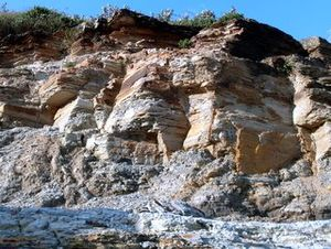 Geography of Sydney - Virtually all of Sydney's exposed rocks are sandstone (Narrabeen Group of sedimentary rocks at Narrabeen).