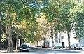 Naturdenkmal 539 2011-09-03 0122 Wien02 Innstrasse Platanenallee GuentherZ.JPG