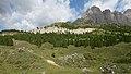 Ncisles Roa blancia Gherdeina.jpg