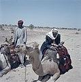 Negevwoestijn. Bedoeienen met kamelendromedarissen langs de weg i.a.v. toeriste, Bestanddeelnr 255-9330.jpg