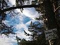Neuberechnung, 673 m - panoramio.jpg