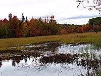 New England Autumn (3983350680).jpg
