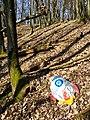 Niedergegangener Spielzeug-Folienballon als Plastikmüll sl1.jpg