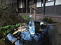 Niteko Cider with spring.jpg