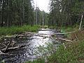 North Fork Little Butte Creek.jpg