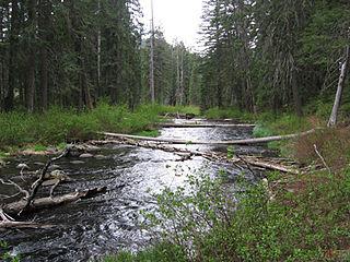 Little Butte Creek River in Oregan, USA